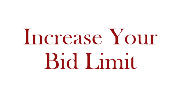 Request an Increase to Your Bid Limit